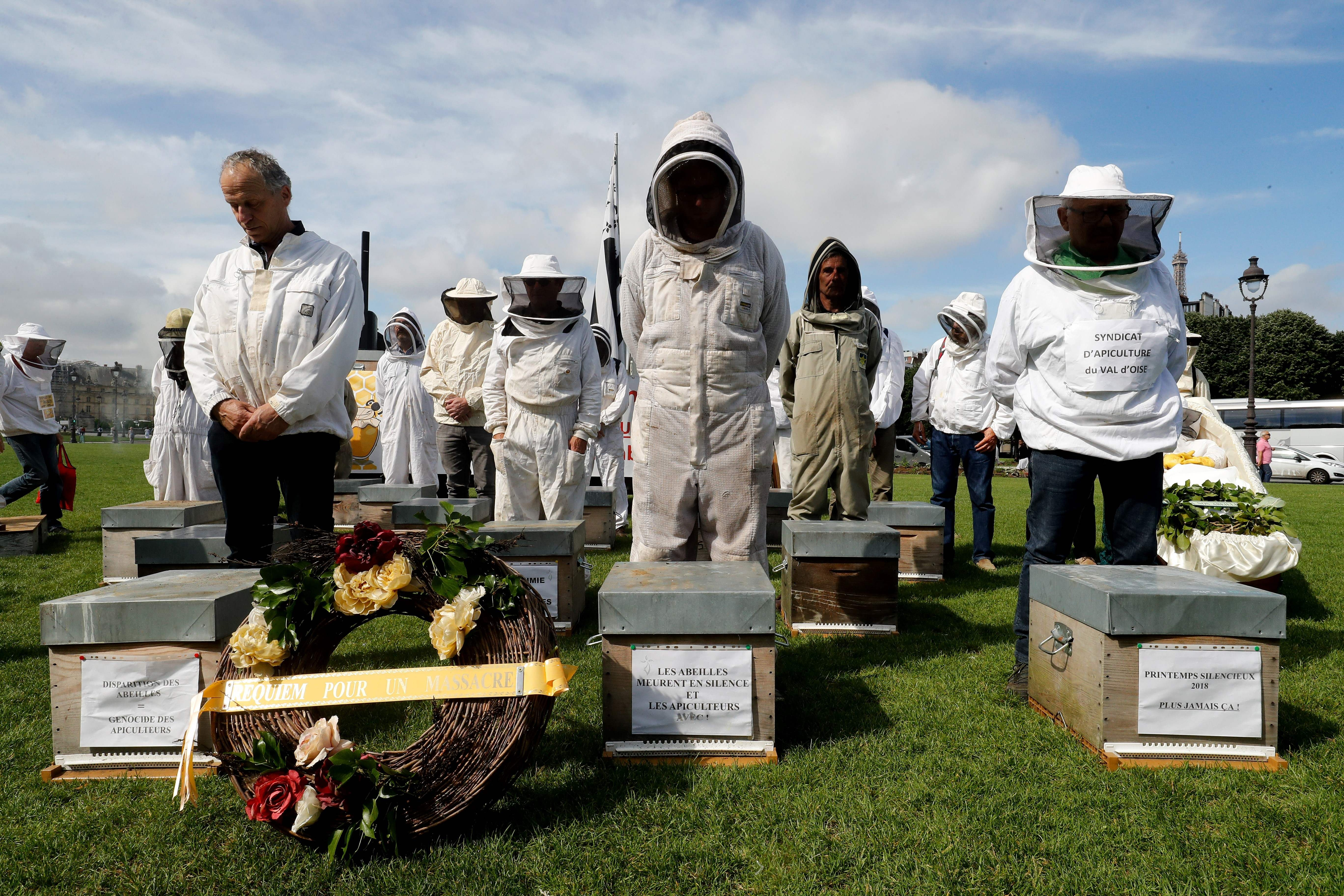 Beekeepers take part in a demonstration at the Esplanade des Invalides in Paris on June 7, 2018, during a national day of action of French beekeepers. Photo: Francois Guillot/AFP/Getty Images
