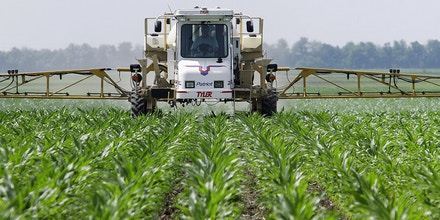 EPA Used Monsanto's Research on Roundup