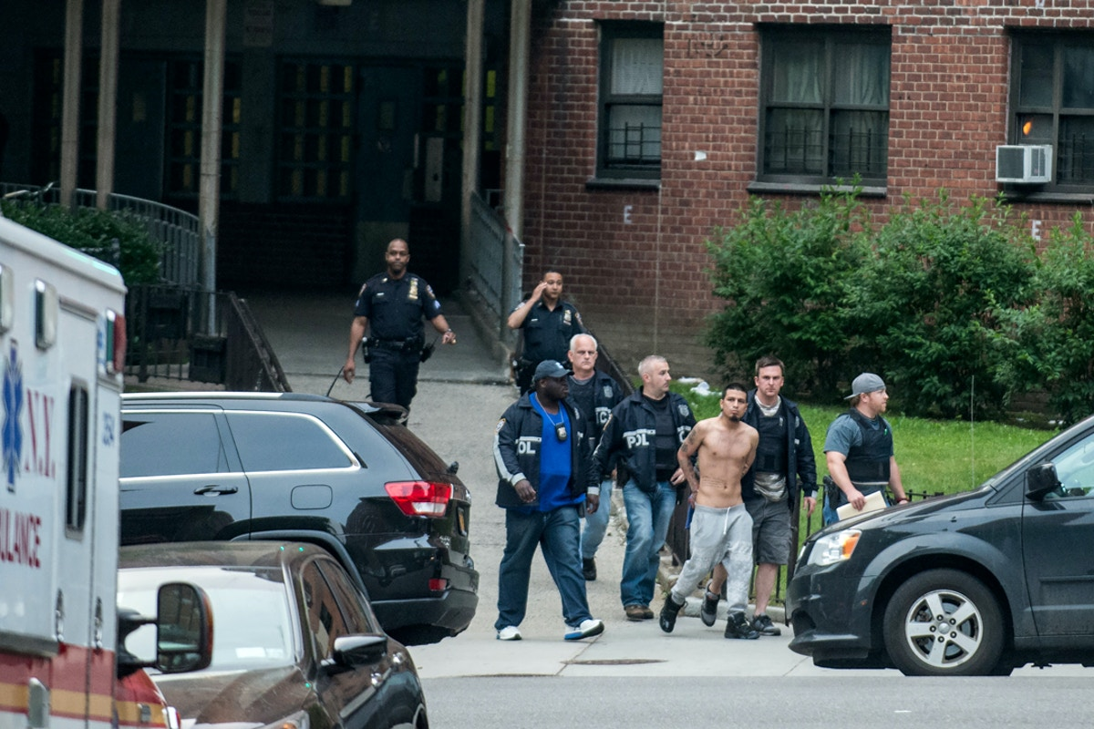 New York's Gang Sweeps Are Overbroad – The Intercept