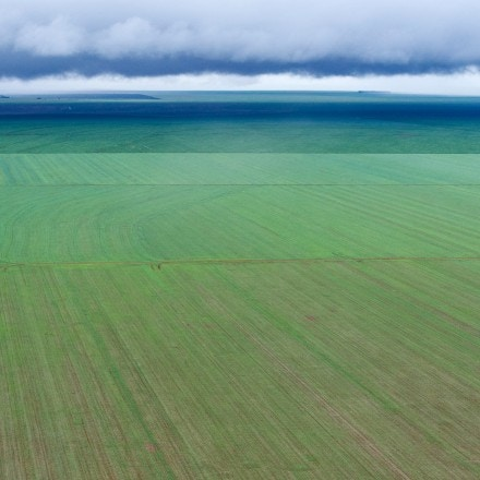 Aerial view of a soy bean field, in Campo Novo do Parecis, about 400km northwest from the capital city of Cuiaba, in Mato Grosso, Brazil, on March 27, 2012.   AFP PHOTO/Yasuyoshi CHIBA        (Photo credit should read YASUYOSHI CHIBA/AFP/GettyImages)
