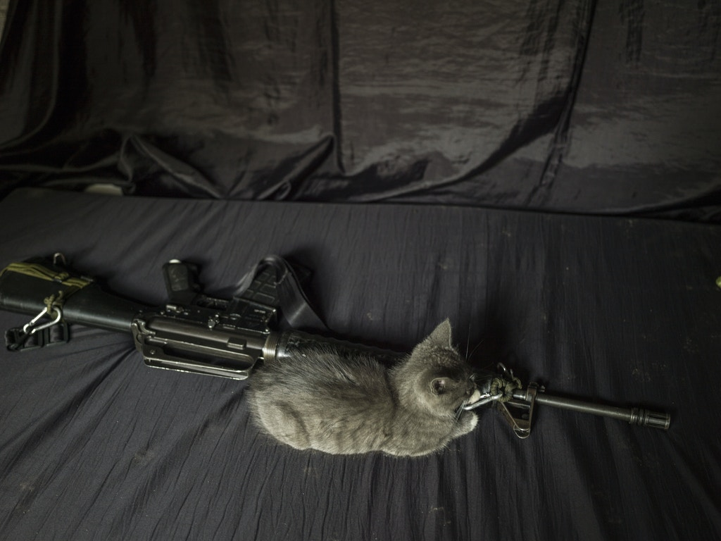 COLOMBIA. 2017.  A guerilla's kitten sleeps beside her gun. Prior to the peace agreement, keeping pets was forbidden.