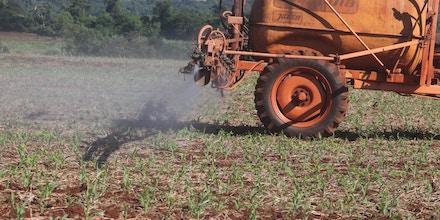 CAMPO MOURÃO, PR - 17.03.2018: AGRICULTORES PULVERIZAM LAVOURAS NO PR - Produtores rurais de Campo Mourão, na Região Centro-Oeste do Paraná, iniciaram as aplicações de agrotóxicos nas plantações de milho safrinha para combater pragas que atacam as lavouras. Na foto, agricultor faz aplicação de agrotóxico para combater pragas na lavoura de milho safrinha em propriedade rural, em Campo Mourão. (Foto: Dirceu Portugal /Fotoarena/Folhapress) ORG XMIT: 1500226