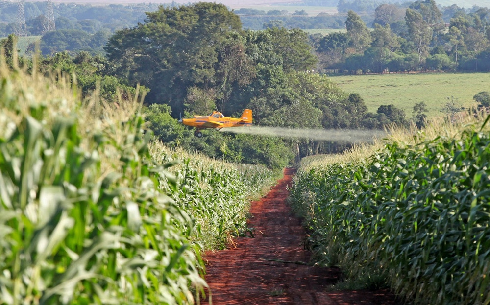 CAMPO MOURÃO, PR. 02.04.2016: Pulverização aérea de plantação de milho em Campo Mourão, região Centro-Oeste do Paraná. (foto: Dirceu Portugal/Folhapress)