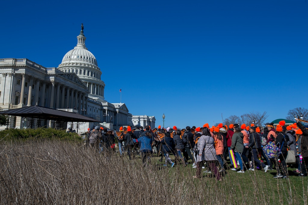 WASHINGTON, DC - MARCH 05:  Pro DACA and Dreamer supporters march on the US Capital on March 5, 2018 in Washington, DC.  (Photo by Tasos Katopodis/Getty Images for MoveOn.org)
