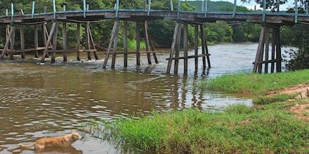 Parte final do Rio Arrojado flui a 40 litros por segundo na estação seca o que deveria ocorrer na época chuvosa, segundo ambientalista.