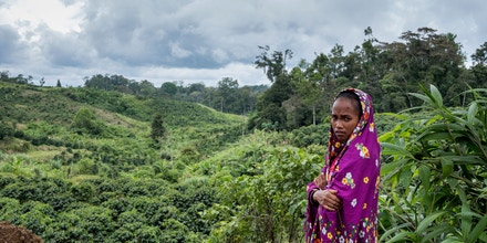 Marivic Danyan overlooks the coffee plantations near her home in the village of Tabasco. When the Philippine Army's 27th Infantry Battalion attacked her village on Dec. 3, 2017, Marivic Danyan lost her husband, father and two brothers.