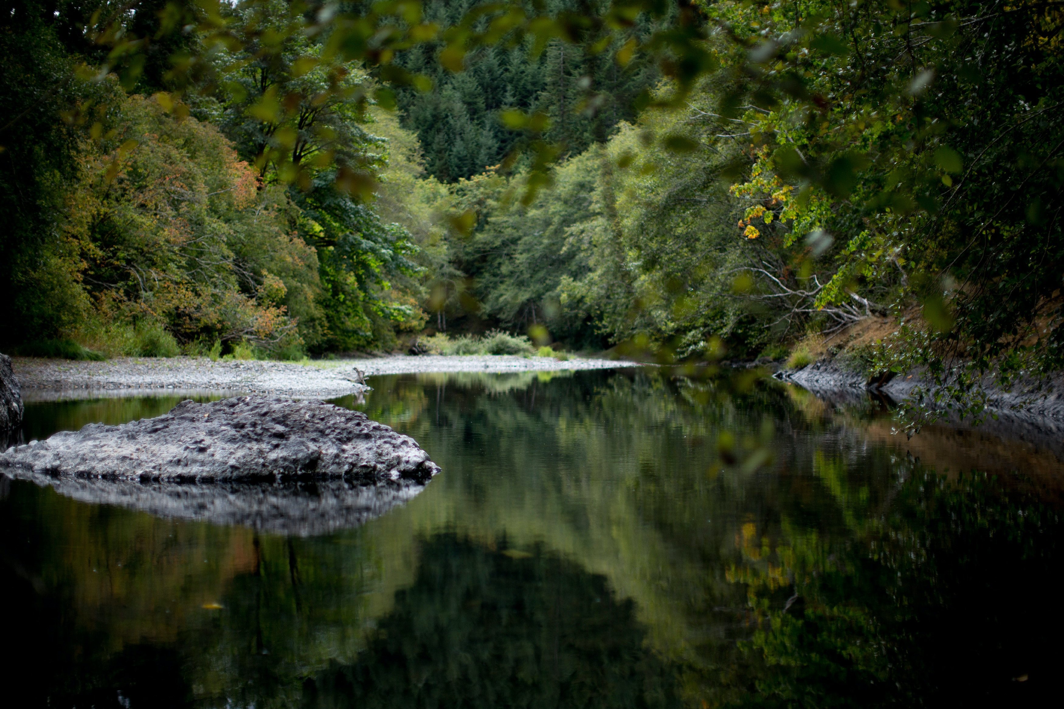 OREGON COAST, OR - SEPTEMBER 8: The Siletz River, which runs through the Oregon's coastal mountain ranges. September 8, 2018 (Photo by Beth Nakamura For The Intercept)