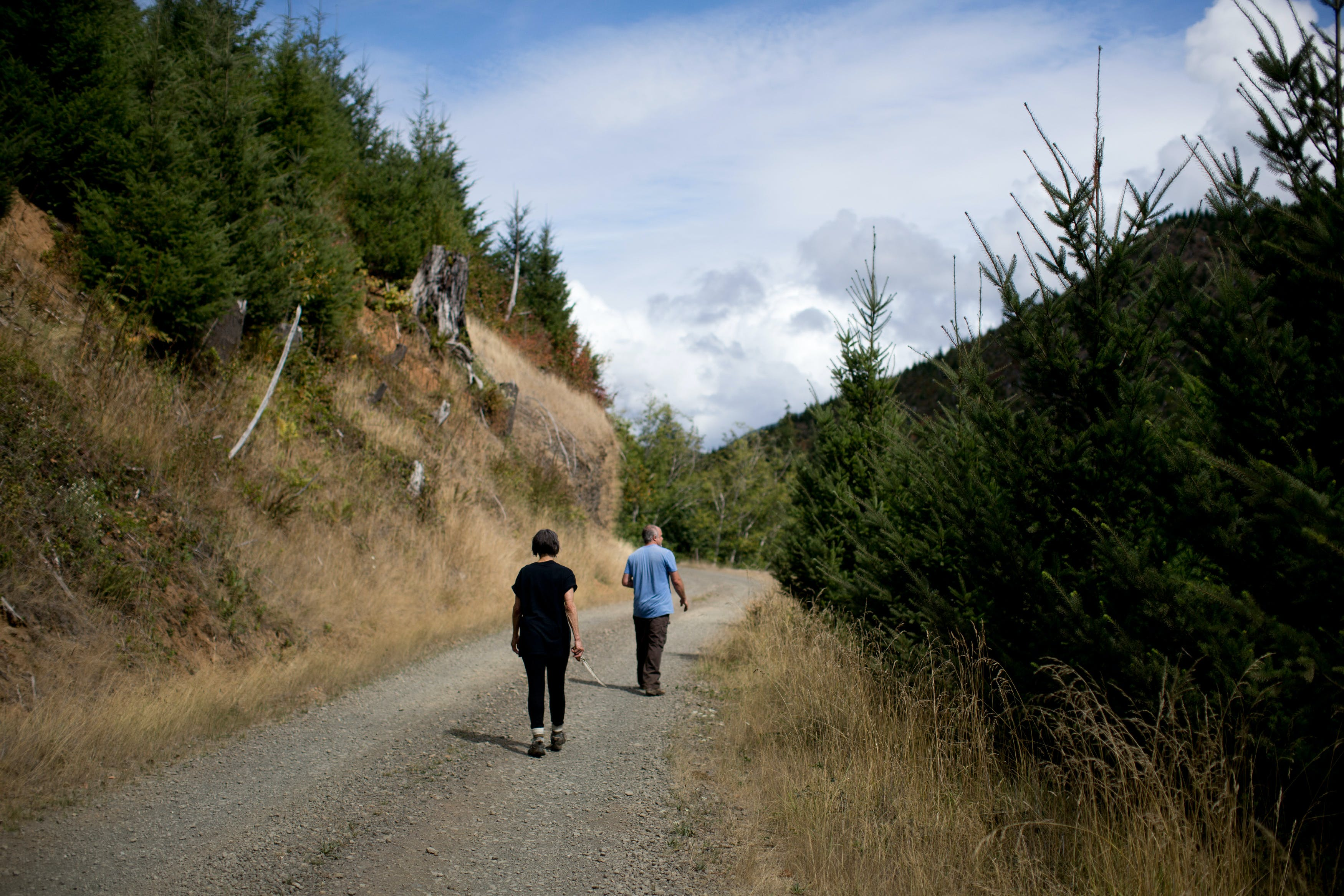 OREGON COAST, OR - SEPTEMBER 8: Barbara Davis and Rio Davidson walk along a logging road on land owned by Weyerhaeuser along the Oregon coast mountains. September 8, 2018 (Photo by Beth Nakamura For The Intercept)