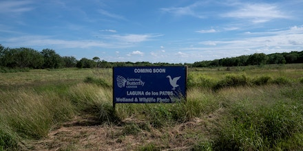 Habitat being restored for migratory birds at the National Butterfly Center that will soon be behind a border wall.