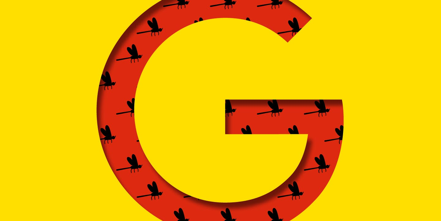 Google Shut Out Privacy and Security Teams From Secret China Project