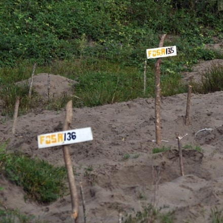 View of wood signs showing clandestine graves located in the Colinas de Santa Fe property, where 296 skulls along with multiple human remains were found, during a mass by the Solecito de Veracruz group at the Colinas de Santa Fe pits, State of Veracruz in Mexico on October 15, 2018. (Photo by VICTORIA RAZO / AFP)        (Photo credit should read VICTORIA RAZO/AFP/Getty Images)