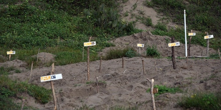 After a Decade of the Drug War, Mexico Is a Burial Ground
