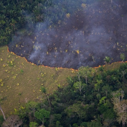 A view of Indigenous Uru-Eu-Wau-Wau land in the Brazilian state of Rondônia being burned on Sept. 24, 2016.
