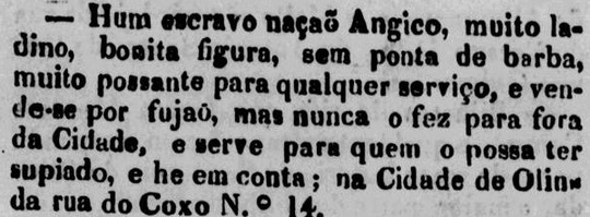 """Anúncio publicado no Diário de Pernambuco em 1830, em que anuncia: """"vende-se por [ser] fujão"""". O termo """"ladino"""" significava que, apesar de o escravo ser africano, ele já dominava o idioma e os costumes locais."""