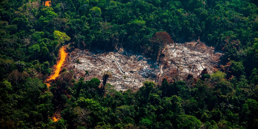 TOPSHOT - Aerial view of deforestation in the Menkragnoti Indigenous Territory in Altamira, Para state, Brazil, in the Amazon basin, on August 28, 2019. (Photo by Joao LAET / AFP)        (Photo credit should read JOAO LAET/AFP/Getty Images)