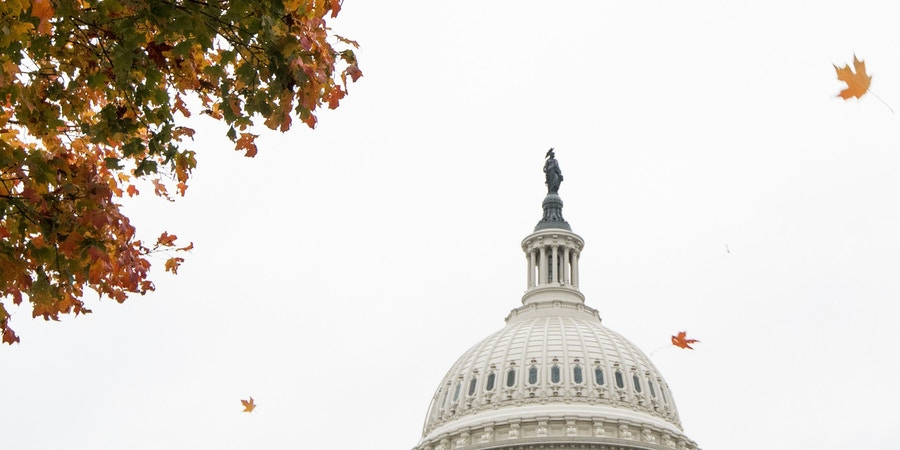UNITED STATES - OCTOBER 31: Fall leaves fly past the Capitol dome on Thursday, Oct. 31, 2019. (Photo By Bill Clark/CQ Roll Call via AP Images)
