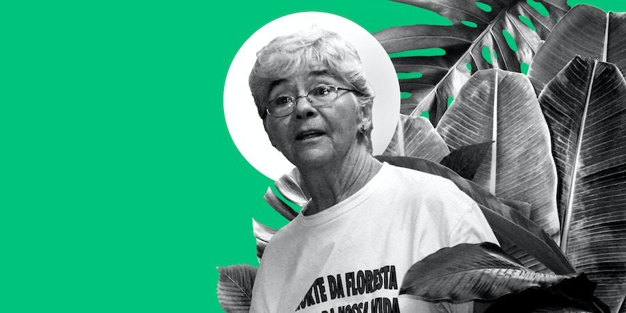 Invasores e a inércia de autoridades estão destruindo o projeto da missionária americana assassinada em 2005, que alia proteção da floresta e renda para famílias.