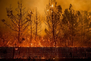 AP_19269687424575-camp-fire-1573077001-crop-1577130566