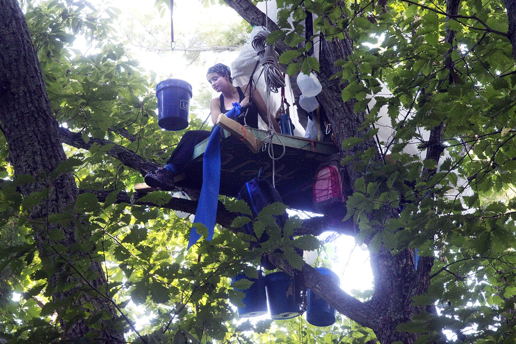 Lauren Bowman, 24, of Montgomery County, sits in a tree stand along the Mountain Valley Pipeline right of way in Montgomery County, near Elliston, Va., on Wednesday, Sept. 5, 2018. Some protesters have taken to trees to block work on the Mountain Valley Pipeline. The Roanoke Times reports the tree-sits were erected early Wednesday. (Heather Rousseau/The Roanoke Times via AP)