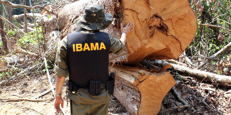Agente da Abin sem experiência foi nomeado para setor-chave para proteção da Amazônia