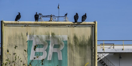 Vultures sit on a sign at the Petrobras Transporte SA (Transpetro) sea terminal in Sao Sebastiao, Sao Paulo state, Brazil, on Wednesday, Dec. 19, 2018. The Planning Ministry will give Petrobras 14.9 billion reais in additional credit for development of oil and gas production, with Transpetro getting 119 million for the acquisition of ships in national shipyards. Photographer: Dado Galdieri/Bloomberg via Getty Images