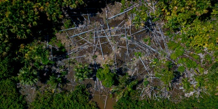 Aerial view of a deforested area in the municipality of Melgaco, Para State, Brazil, on July 30, 2020.