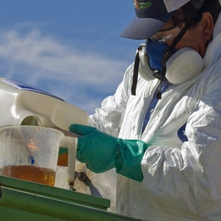 A worker mixing pesticides, which will be sprayed on a field farmed by La Brucherie Produced, Seeley, Imperial Valley, California. *** Local Caption *** Environnement, pollution, produits chimiques, masque, combinaison, gants, protection, insecticides, herbicidesagriculture agricultural air chemical chemicals chemicals country dust Economy environmental issues environment farm farm farming farm farmyard farm worker farm worker workers farmer farmers farming farmworker farmworkers half face particulate mask masks hazard hazardous safety hazard hazards hazardous health and safety Imperial Valley insecticide insecticides Work landworker landworkers man men pesticide pesticide pesticides pollution pour pouring protective clothing respirator respirators rural Seeley spray work working worker workers