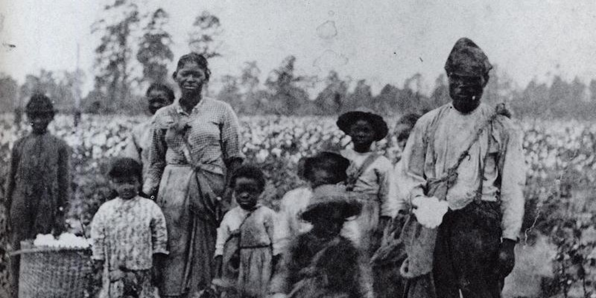 An enslaved family picking cotton outside Savannah, Ga., in the 1850s. Photograph by Pierre Havens.